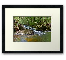 Riverside idyll Framed Print
