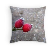 It Was 'Berry' Cold Throw Pillow