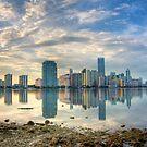 Miami Skyline by njordphoto