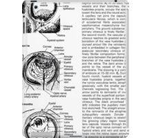 sick human eye iPad Case/Skin
