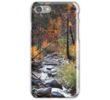 In the autumnal forest iPhone Case/Skin