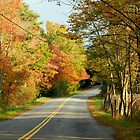 Maine Country Road by RoyceRocks