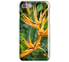 Strelitzia iPhone Case/Skin