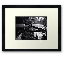 First Light 2 on the Withlacoochee River Framed Print