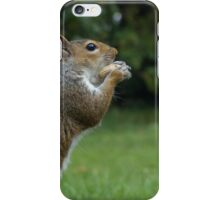 Nobby The Nut Nibbler #2 iPhone Case/Skin