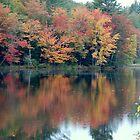 Autumn Pond by RoyceRocks