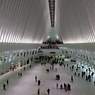World Trade Center Transit Hub Oculus, Lower Manhattan, New York City by lenspiro