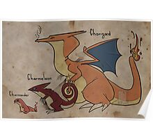 Charizard and cie Poster