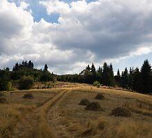 Late Summer Meadows and Haystacks by Georgia Mizuleva