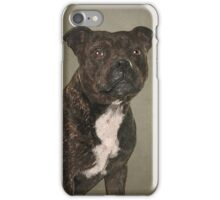 Staffordshire Bull Terrier Portrait iPhone Case/Skin