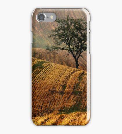 Carpet fields iPhone Case/Skin