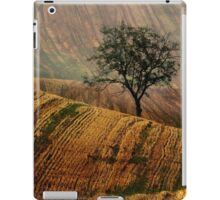 Carpet fields iPad Case/Skin