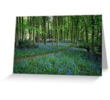 Bluebell Forest, East Sussex Greeting Card