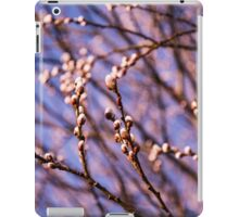 Willow Blossoms iPad Case/Skin