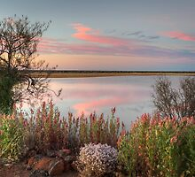 Sunset  At Malcolm Dam by Robert Armitage