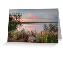 Sunset  At Malcolm Dam Greeting Card