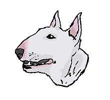 Bull Terrier (Subject 8) Photographic Print
