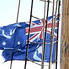 Flag on a Rope by Stephen Mitchell