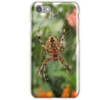 End of Summer Garden Spider iPhone Case/Skin