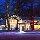 Patonga Beach Hotel by Michael Jones