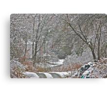 11/10/13 First Snow 2 Canvas Print