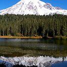Mt. Rainier by Nancy Richard