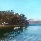 Dark Corner Moorings, Patonga, NSW by Michael Jones