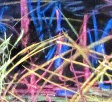 Nature of Chalk by Darryl Kravitz Sticker
