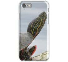 Painted turtle on log iPhone Case/Skin