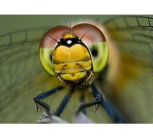 I am looking at you! Photographic Print