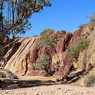 Ochre Pits West MacDonnell Ranges by Deirdreb