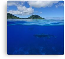 Whales underwater split with island at the horizon Canvas Print