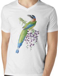TIR-Brazil-Bird-6 Mens V-Neck T-Shirt