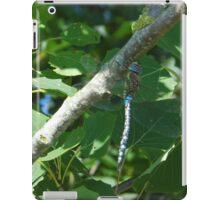blue dragon-fly iPad Case/Skin