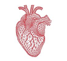 red human heart with geometric mesh pattern Photographic Print
