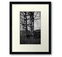 Decayed Treehouse Framed Print