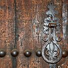 Old door with knocker  by Arie Koene