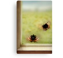 Trapped duet Canvas Print