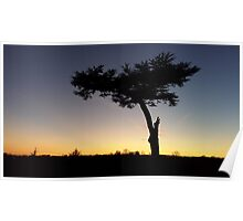 Sunset in the Park Poster