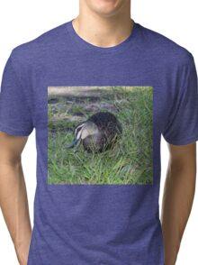 Delightful Duck Tri-blend T-Shirt