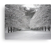 Wintersday  Canvas Print