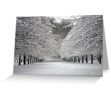 Wintersday  Greeting Card