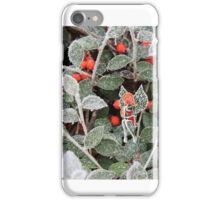 Lost pixie in frosted winter iPhone Case/Skin
