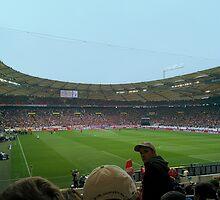 Mercedes-Benz Arena Stuttgart by karlmagee