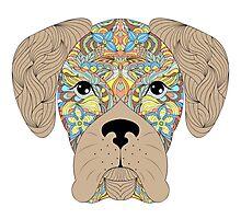 head of dog  Photographic Print