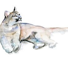 Puma Cougar watercolor illustration by Zendrawing