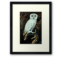 Snowy White Owl~Relief wood carving, painted with acrylics (11x17) Framed Print