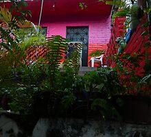 colores de mexico  by Bernhard Matejka