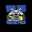 Wolves Water Polo by Gregory Colvin
