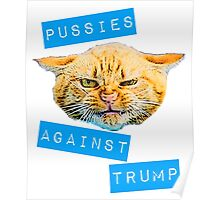 Pussies Against Trump 2.0 Poster